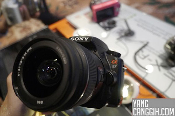 sony alpha a-37 photo live en attendant l'officielle