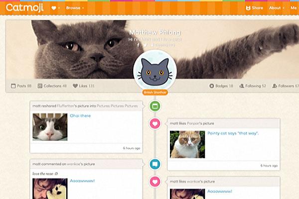 CATMOJI reseau social pour chats a la Facebook