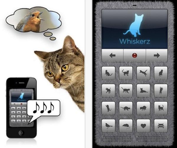 iphone-traducteur-langage-des-chats-gratuit