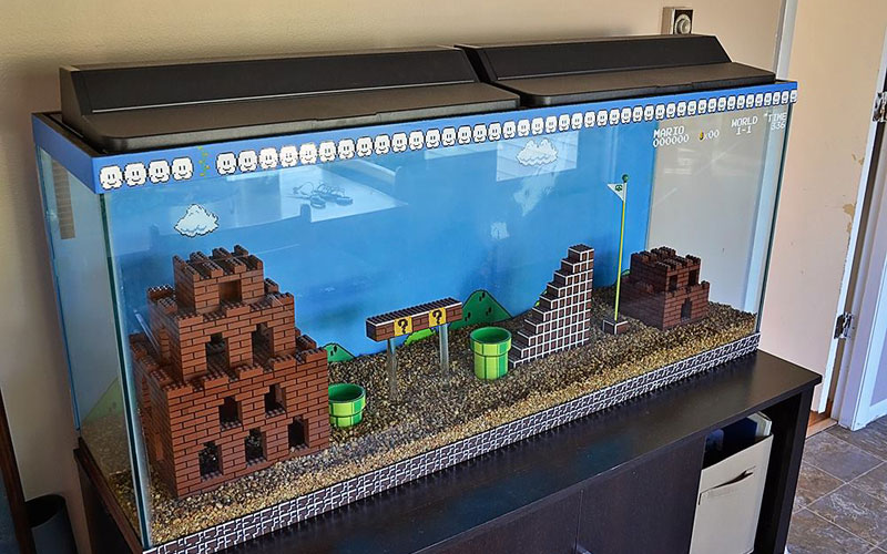 aquarium-super-mario-bros-a-faire-soi-meme