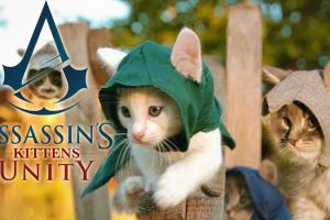 assassins-kittens-unity-parodie-avec-des-chatons