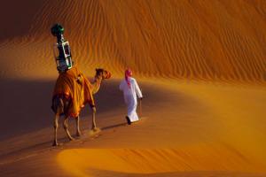visiter-sahara-liwa-avec-google-maps