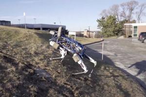 spot-robot-chien-qui-na-peur-de-rien