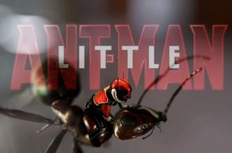 little-ant-man-parodie-video-par-patrick-boivin