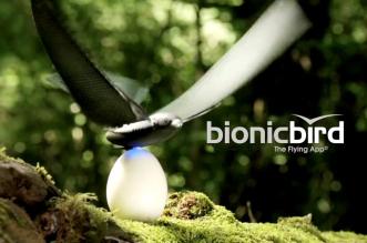 bionicbird-oiseau-bionique-controle-par-mobile-android-ios